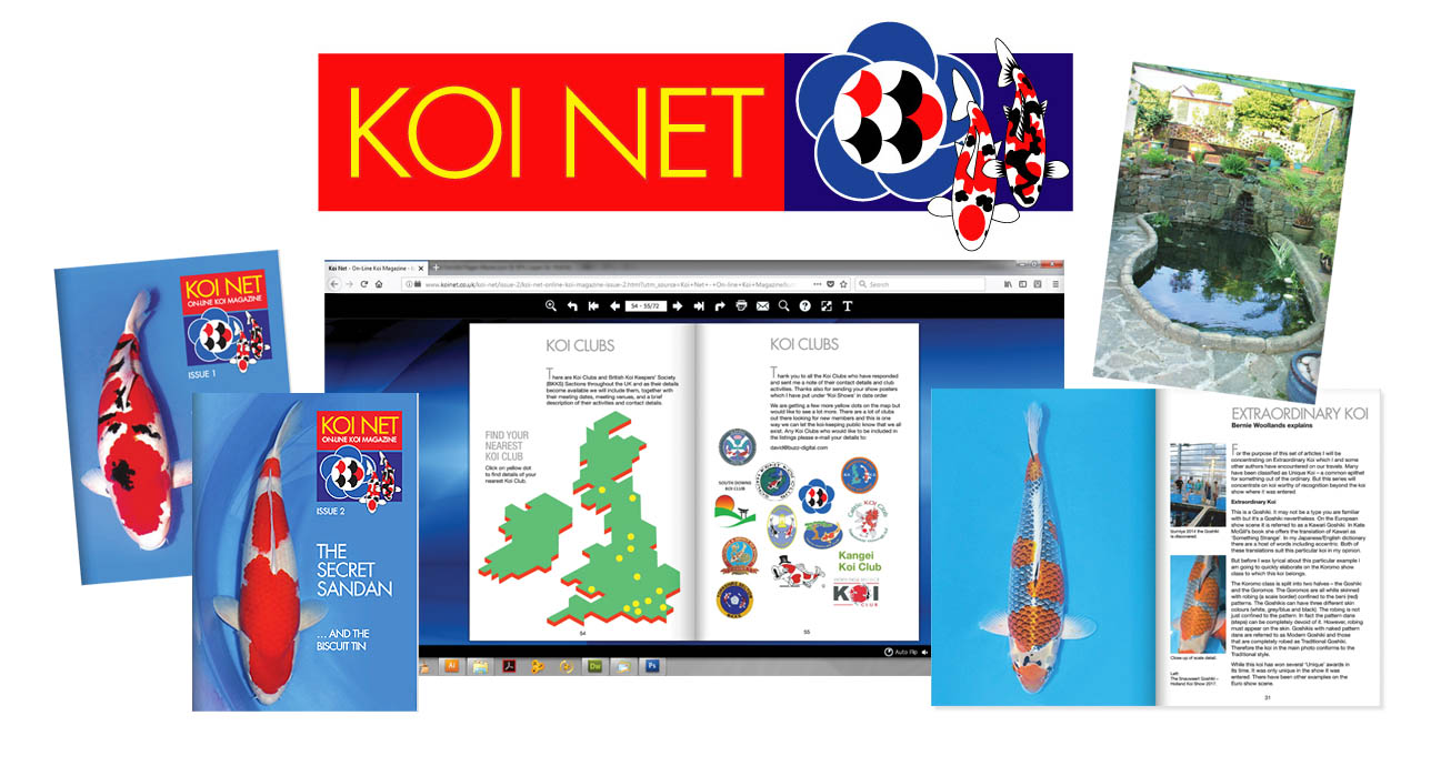 Koi Net Logo and Picture Montage
